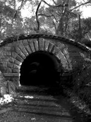 TunnellCentralParkInkOutlines